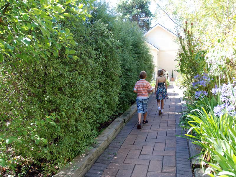hahndorf house gardens alley